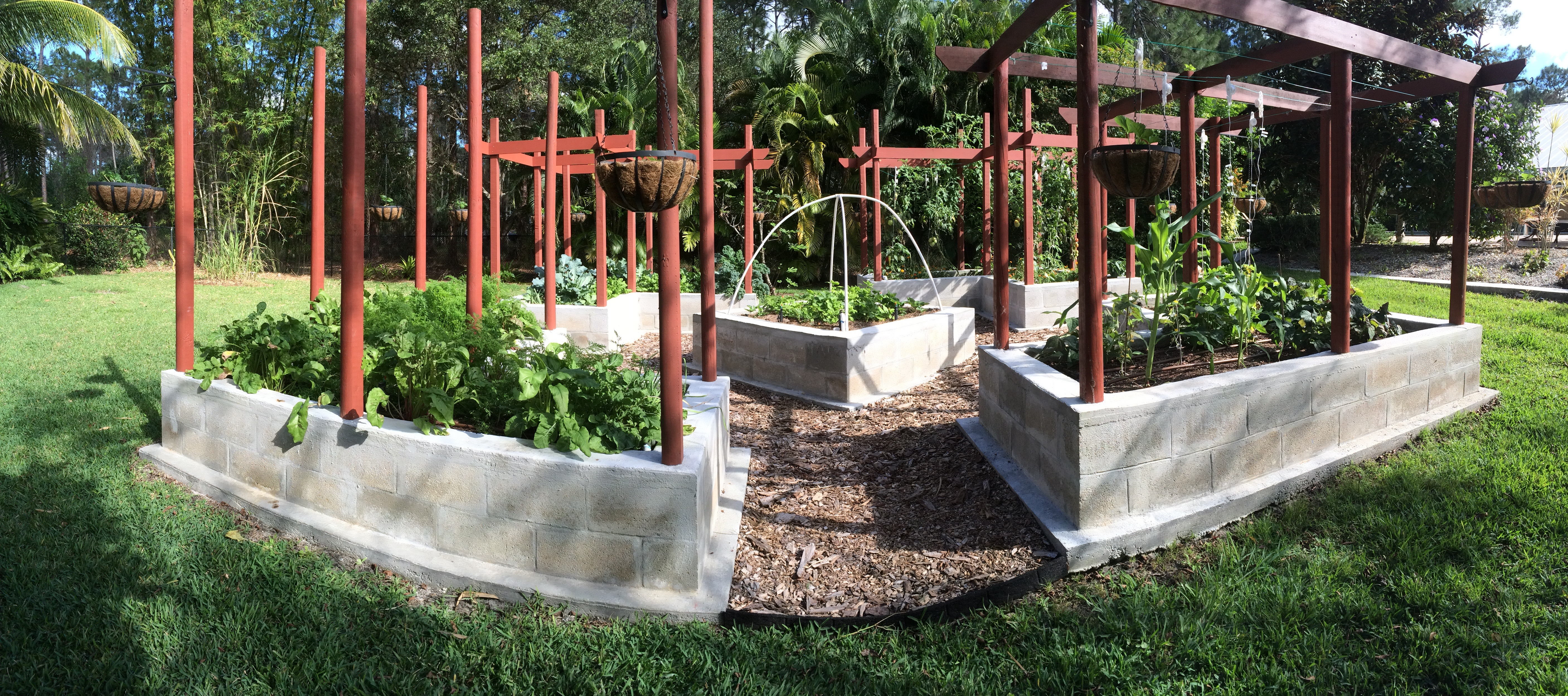 Get Ready for Fall Gardens in SWFL